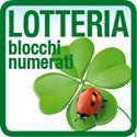 Biglietti della lotteria numerati con tagliandi madre/figlia personalizzati con la grafica della vostra iniziativa. E poi... buona fortuna :-)